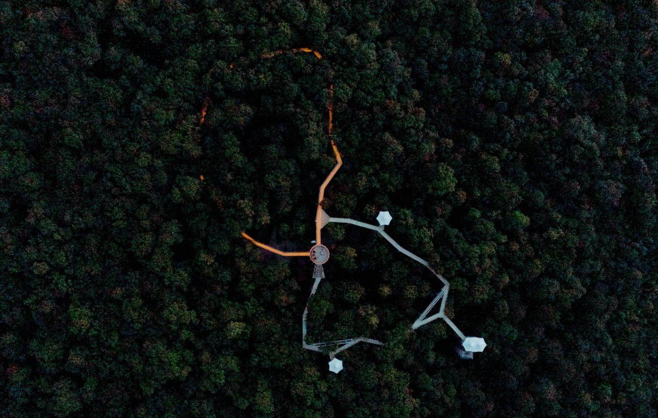 LED-Bänder RGBW Baumkronenpfad Hainich
